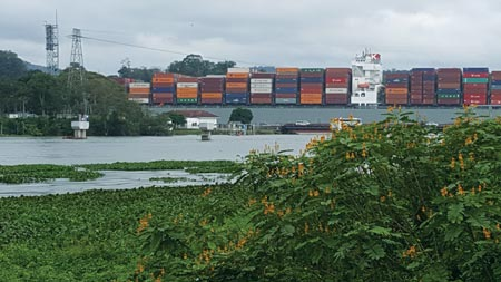 cargo ship on the Panama Canal