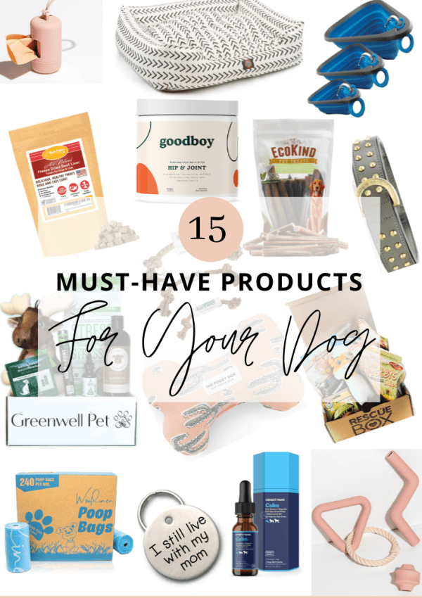 15 Must-Have Products for Your Dog