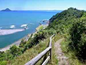 Hiking - Trail near Whakathane in New Zealand