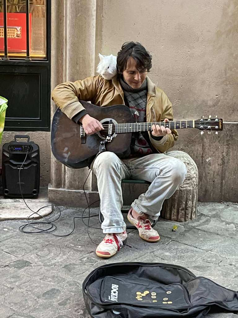 Musician and the rabbit pet in Rome