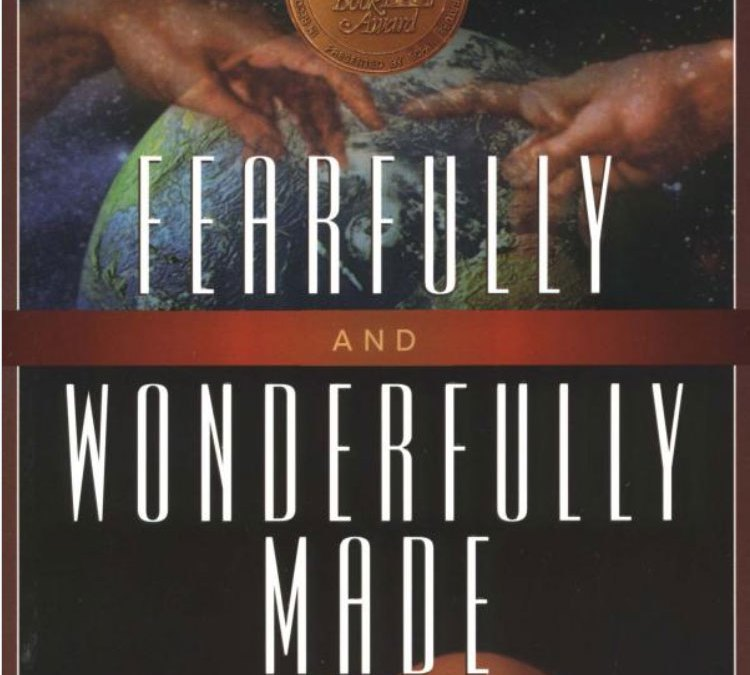 """Fearfully and Wonderfully Made"" (and sequel) by Phillip Yancey ~ Book Review"