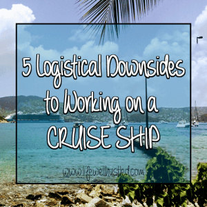 downsides to working on a cruise ship