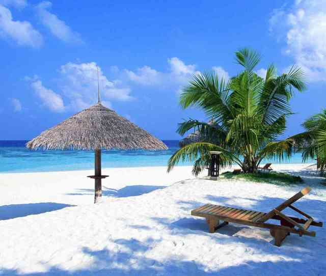A Beach With Palms And A Lounger