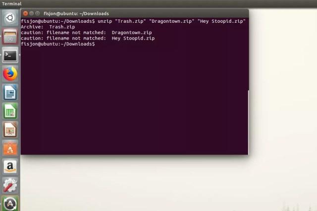 Screenshot of unzip errors in Ubuntu