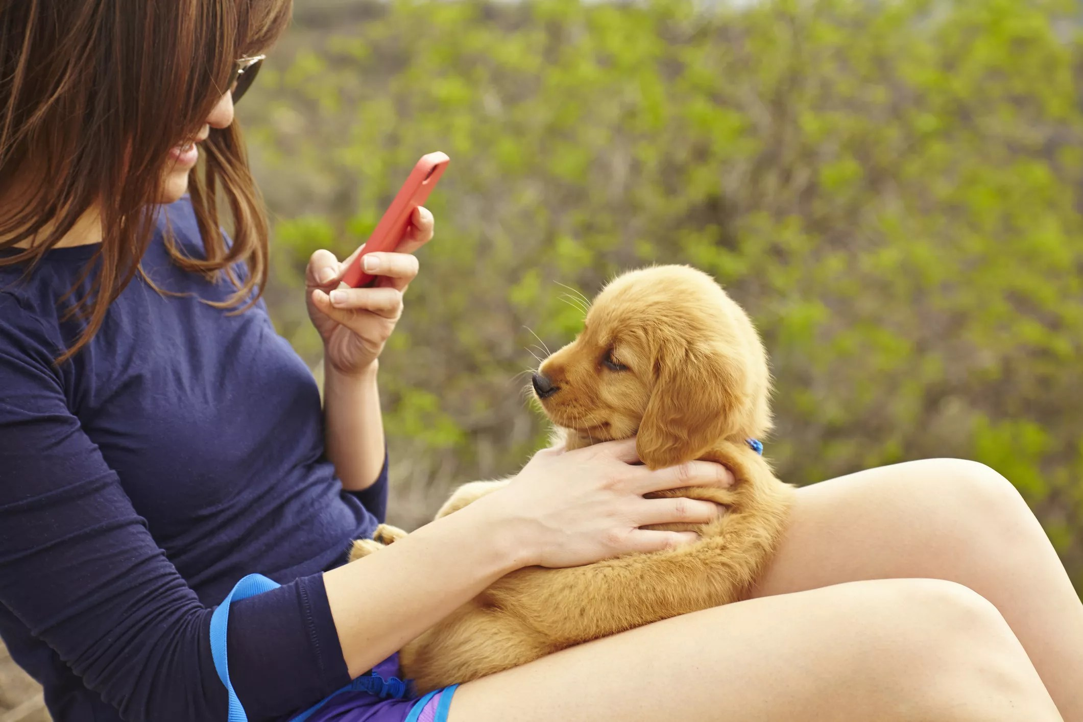 An image of a woman taking a photo of a puppy with her smartphone.