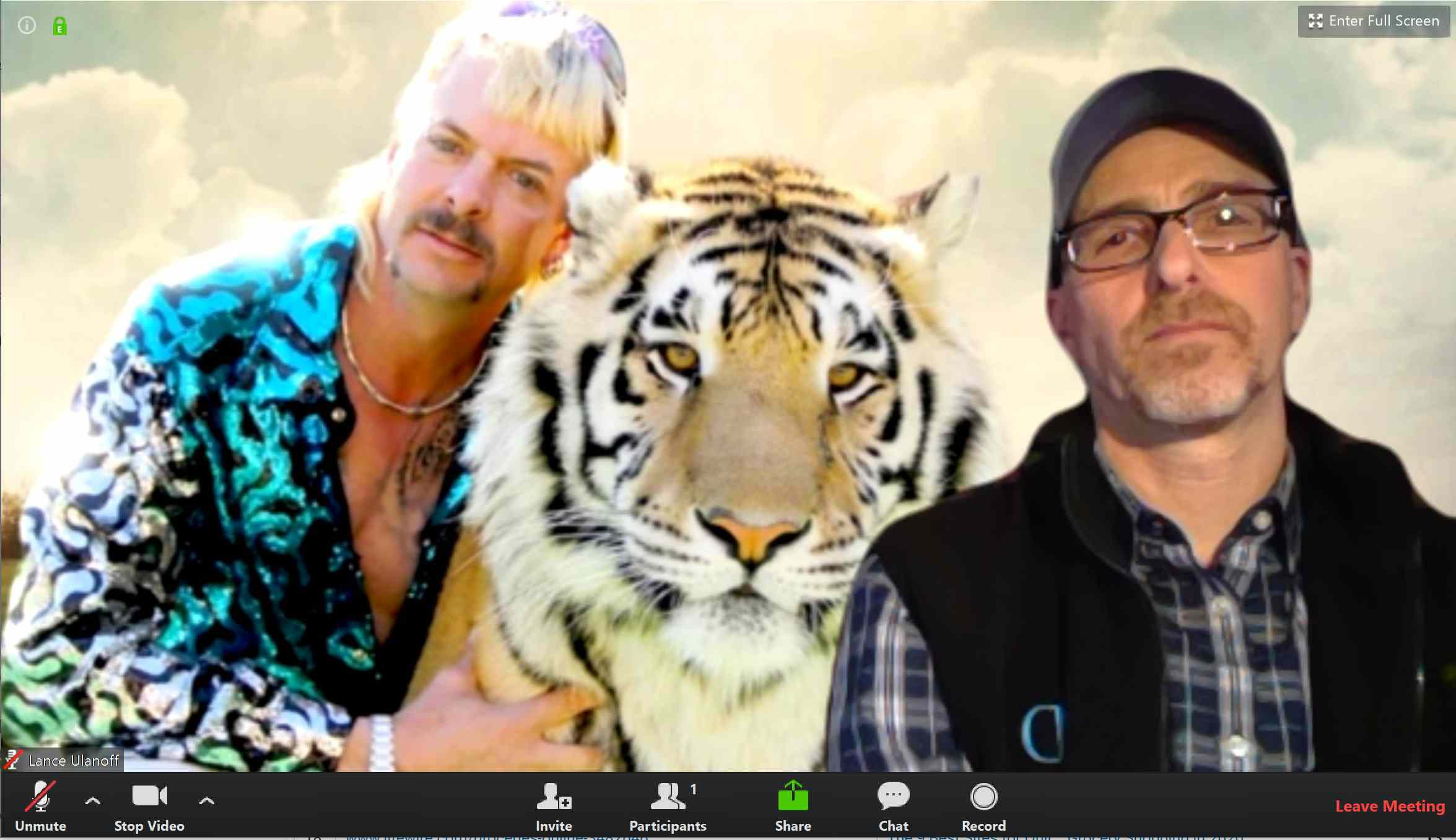 Funny Virtual Backgrounds Tiger King