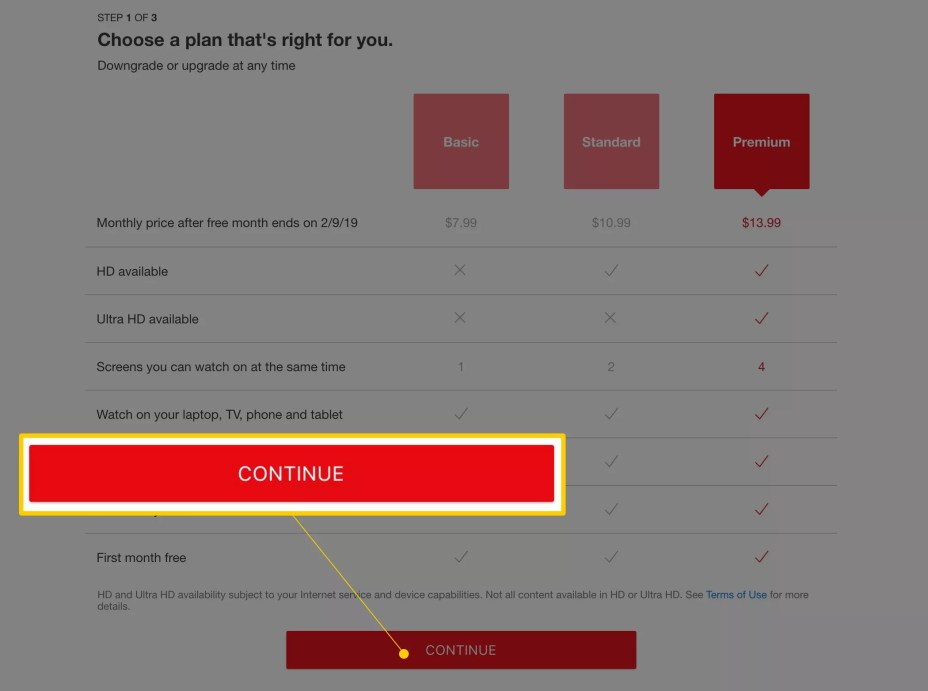 Continue button on Netflix plan selection page
