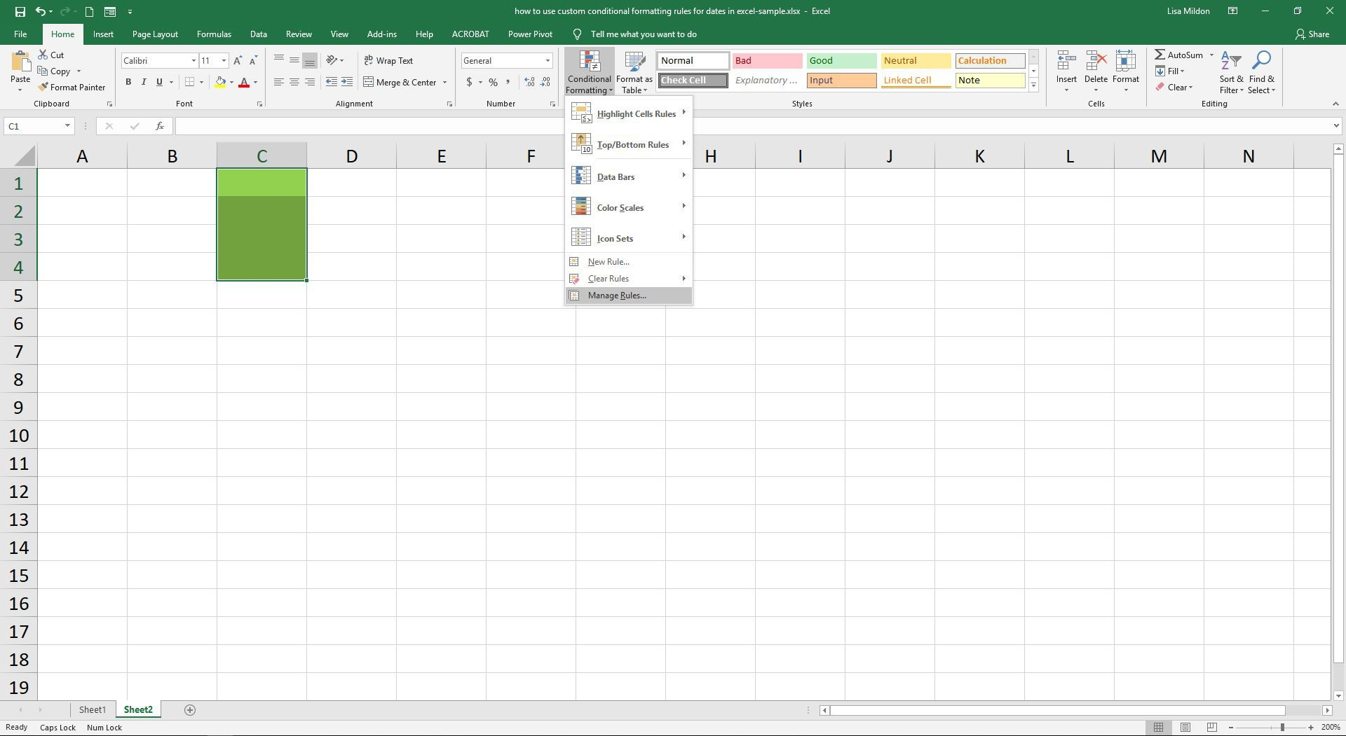 Use Custom Conditional Formatting Rules For Dates In Excel
