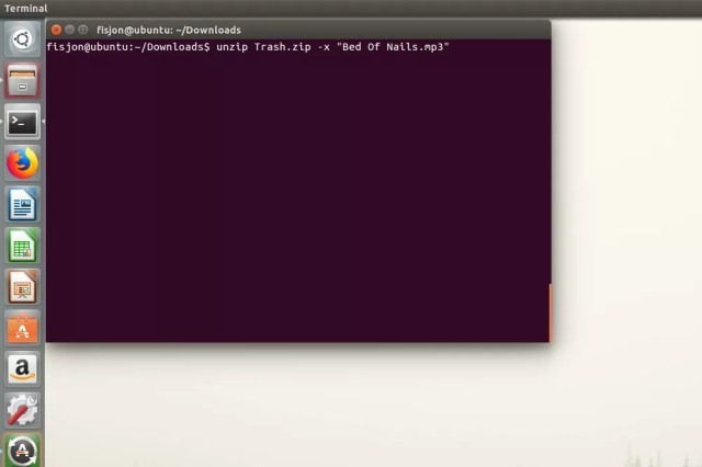 Screenshot showing how to unzip everything but one file from a ZIP archive in Ubuntu