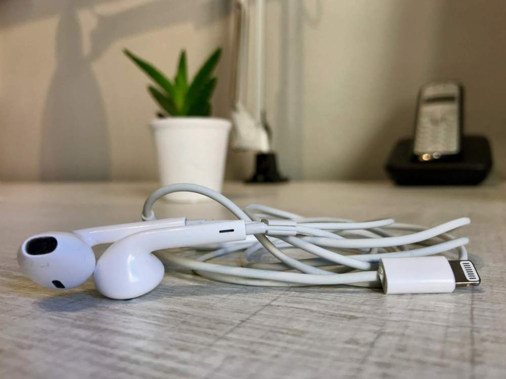 medium resolution of a pair of earpods lightning connector on a table in front of a plant
