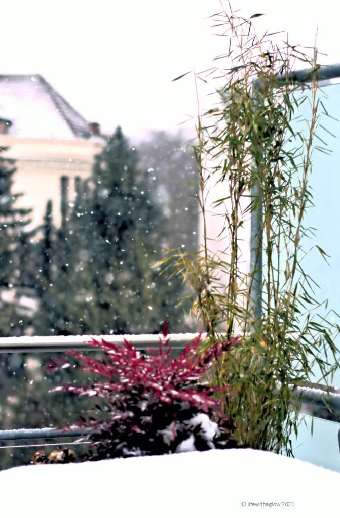 Winterwetter-tanzende Schneeflocken