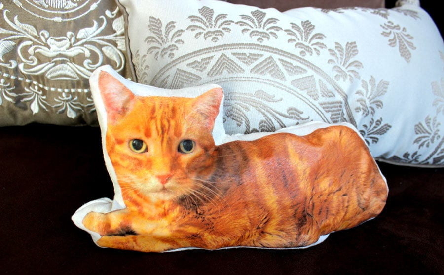 make your own custom cat pillow life