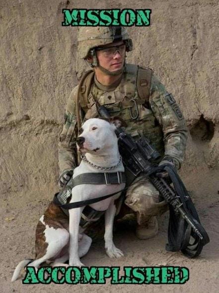 marines dog handler