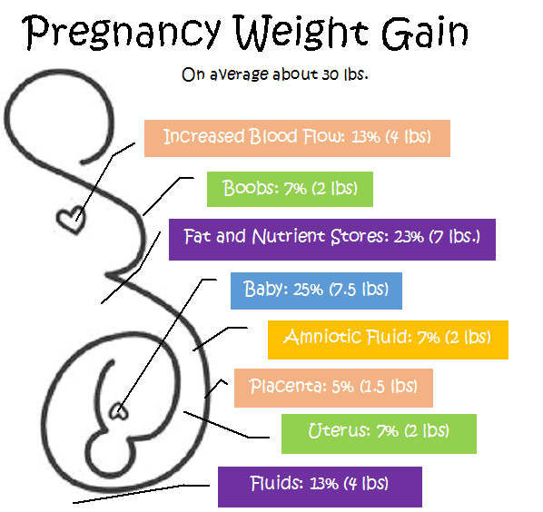 Pregnancy Weight Gain Whats Normal