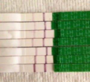 how to use ovulation test strips OPK