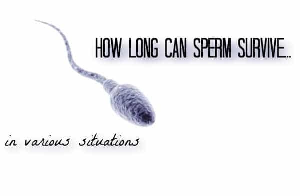 How Long Can Sperm Live? Sperm Lifespan in Various Situations