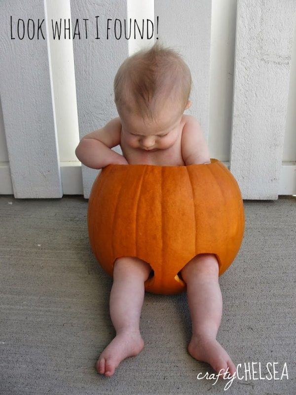 How to Take a Good Picture of Your Baby in a Pumpkin: Tips that will really help make it easy!
