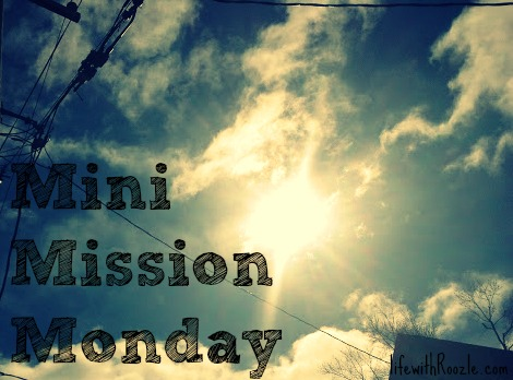 mini mission monday