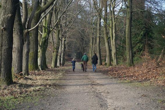 family park walk for exercise