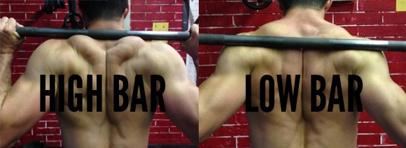 Squat Low Bar and High Bar