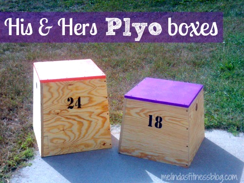 Diy Plyo Box His Hers