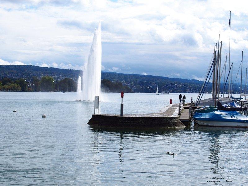 O que fazer em Zurique - Aquaretum