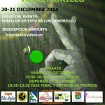 I OPEN VALDEMORILLO 2014