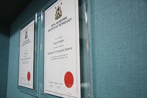 WHO基準カイロプラクターによる施術
