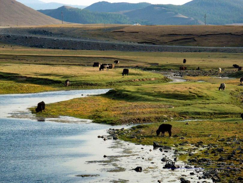 Mongolei 2003 11 - Mongolei 2003-11 - allgemein -