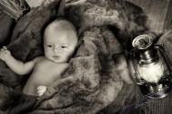 B17R0105 14 - Fleißige Störche und die Babys - portraets, newborn, kinder, babyfotos - Kinderporträts, Kinder, Geschenke, Babyfotos