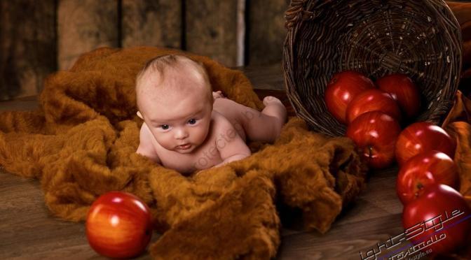 Fleißige Störche und die Babys