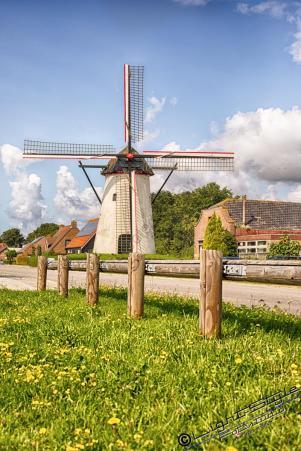 Holland 2017-1633-Bearbeitet