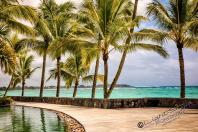 Mauritius 2018 2139 Bearbeitet 1 - Mauritius 2018-Reisebericht & Fotos - urlaubsfotos, outdoor, non-commercial, naturfotos, natur, funstuff, allgemein - Urlaub, outdoor, Naturfotos, Ein Tag im Leben eines Fotografens, Draußen, Die Geschichte hinter den Fotos