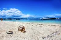 Mauritius 2018 225 Bearbeitet 1 - Mauritius 2018-Reisebericht & Fotos - urlaubsfotos, outdoor, non-commercial, naturfotos, natur, funstuff, allgemein - Urlaub, outdoor, Naturfotos, Ein Tag im Leben eines Fotografens, Draußen, Die Geschichte hinter den Fotos