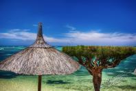 Mauritius 2018 308 - Mauritius 2018-Reisebericht & Fotos - urlaubsfotos, outdoor, non-commercial, naturfotos, natur, funstuff, allgemein - Urlaub, outdoor, Naturfotos, Ein Tag im Leben eines Fotografens, Draußen, Die Geschichte hinter den Fotos