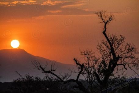 Südafrika 2019 2001 - Afrika - Ein Traum wurde wahr - urlaubsfotos, outdoor, offene-worte, non-commercial, naturfotos, natur, allgemein, alles, abseits-des-alltags -