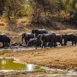 Südafrika 2019 2467 - märchenhaftes Deutschland - ooc, non-commercial, naturfotos, natur, abseits-des-alltags - Wasserfall, Naturfotos, Deutschlands schöne Seiten