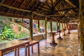 Südafrika 2019 3217 - Afrika - Ein Traum wurde wahr - urlaubsfotos, outdoor, offene-worte, non-commercial, naturfotos, natur, allgemein, alles, abseits-des-alltags -