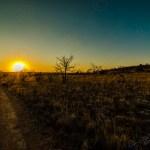 Südafrika 2019 322 - mal wieder etwas aus der Newborn Fraktion ;-) - newborn, kinder, allgemein - stolze Eltern, Newborns, Kinderporträts, Kinder, Babyfotos