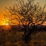 Südafrika 2019 361 - After Wedding Shooting Teil 1 - hochzeitsfotos, afterwedding, abseits-des-alltags - outdoor, Hochzeitsfotos, Glamour, Geschenke, Die Geschichte hinter den Fotos, After wedding
