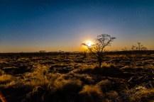 Südafrika 2019 474 - Afrika - Ein Traum wurde wahr - urlaubsfotos, outdoor, offene-worte, non-commercial, naturfotos, natur, allgemein, alles, abseits-des-alltags -