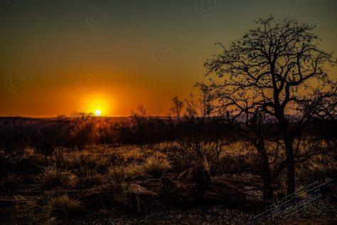 Reisebericht Südafrika, Afrika – Ein Traum wurde wahr, Fotostudio Light-Style`s Blog, Fotostudio Light-Style`s Blog