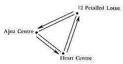 Dynamic Symbols by Duane Carpenter