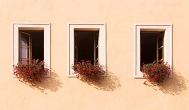 three windows with window boxes