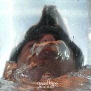 Niv Ast - Goodbye