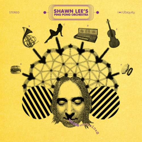 Shawn Lee's Ping Pong Orchestra - Voices and Choices