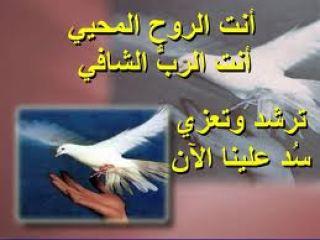ترنيمة روح الله ندعوك تأتي في وسطنا