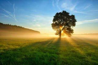 Photo of كيف نعيش قوة الإيمان وحياة الإستعداد والتجديد ؟
