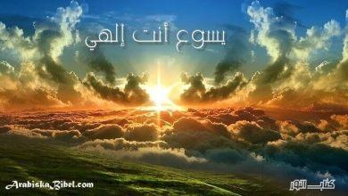Photo of يسوع أنت إلهي حبك شافي الوحيد – السيدة نبيهة يزبك
