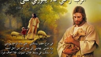 آيات عن سد حاجة, أشبع رغبة, عرض Supply من الكتاب المقدس عربي إنجليزي